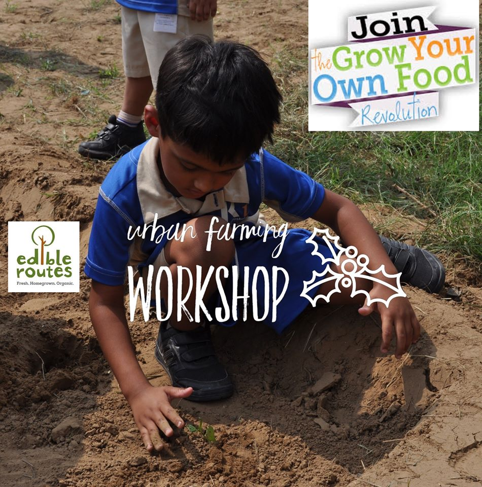 Urban Farming Workshop